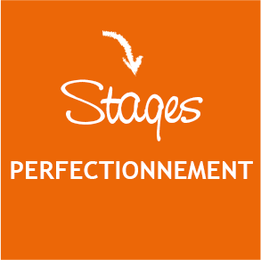 Logo Stage Perfectionnement